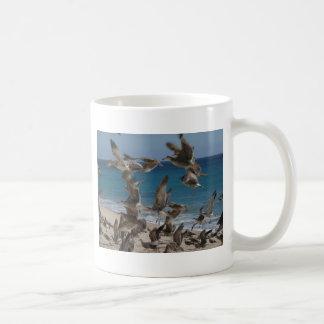 Seevögel - zwei Seiten Kaffeetasse
