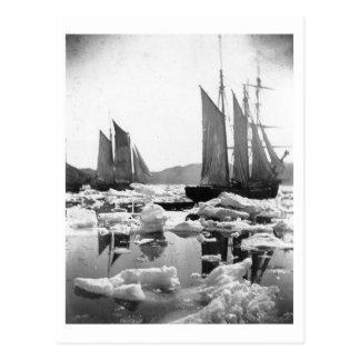 Segeln-Schiffe auf einem Eis-Gebiet - Foto 1869 Postkarten