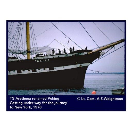 Segelschiff peking fr her ts arethusa postkarte zazzle for Ts arethusa pictures