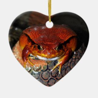 Sehr netter Tomatefrosch. Frosch mit Keramik Ornament