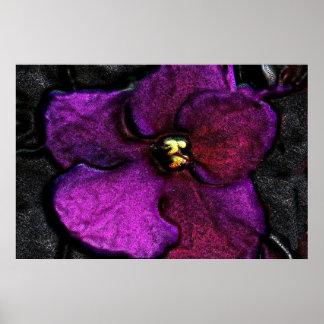 Sehr violettes Veilchen Poster