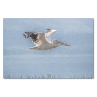 Seidenpapier mit Bild des Pelikans im Flug
