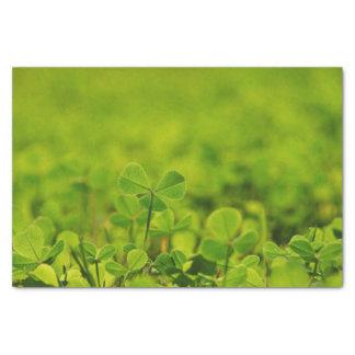 Seidenpapier mit Klee-Blätter im grünen Gras