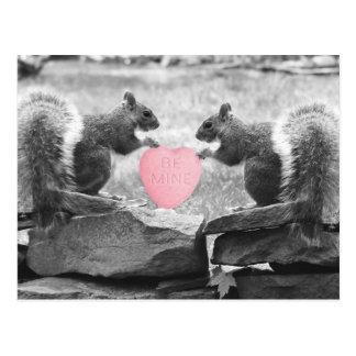 seien Sie Bergwerkeichhörnchen Postkarten