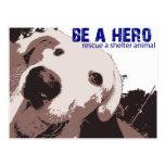 Seien Sie eine Held-Rettung ein Schutz-Tier Postkarten