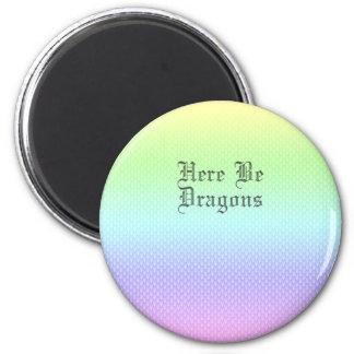Seien Sie hier Drachen, Regenbogen-Muster Runder Magnet 5,7 Cm