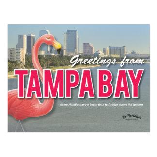 Seien Sie - Tampa Bay Postkarte Florida