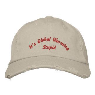 Sein globale Erwärmungs-dummer gestickter Hut