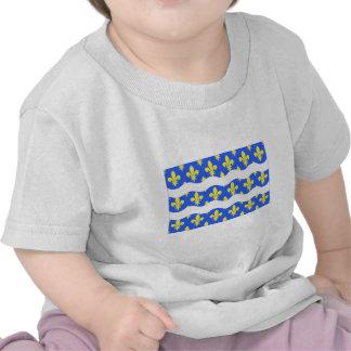 Seine-et-Marneflagge Shirt