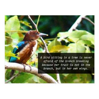 Selbst glauben, Blau und Brown-Vogel auf Postkarte