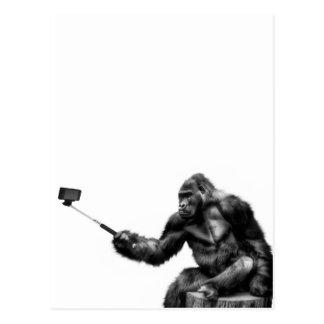 selfie Stock Postkarte