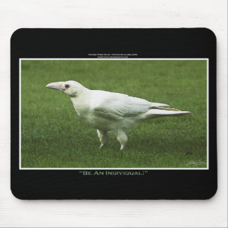 Seltene weiße Raben-Tier-Fotografie Mousepads