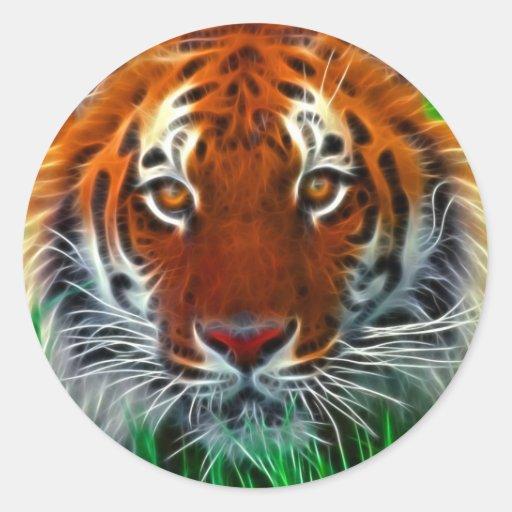 Seltener Sumatran Tiger von Indonesien Runde Sticker