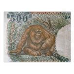 Seltenes Orang-Utan Geld Postkarte