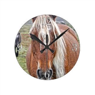 Seltenes Palomino-neues Waldpony-wildes Pferd - Runde Wanduhr