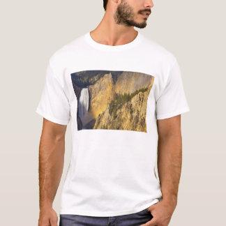 Senken Sie Fälle in den Grand Canyon von T-Shirt