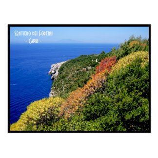 Sentiero dei fortini Weg - Capri, Neapel, Italien Postkarte