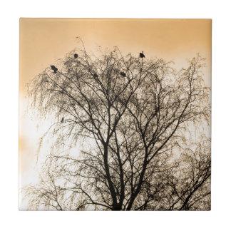 Sepia, der Vögel Roosting ist Fliese
