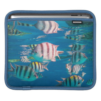 Sergeant Major-Fische iPad Sleeve