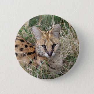 Servalkatze, die im Gras sich entspannt Runder Button 5,7 Cm