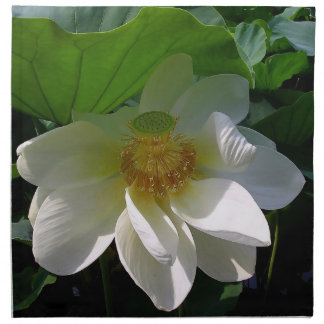 Serviette mit empfindlicher weißer Lotos-Blume