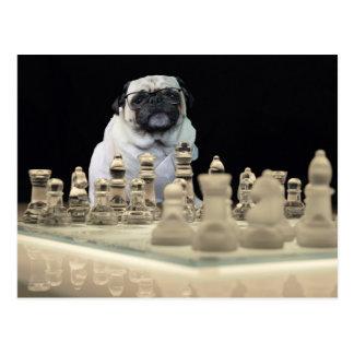 Sexy Misha Mops, der Schach mit Gläsern spielt Postkarte