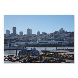 SF StadtSkyline u. Seelöwe-Foto-Druck des Pier-39 Fotodruck