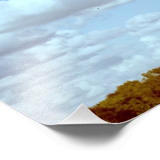 Shabbona See-Staats-Park-Baum und Prarie Druck Photo Druck