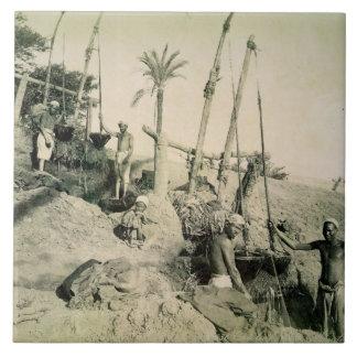 Shadufs in oberem Ägypten (Sepia-Foto) Fliese