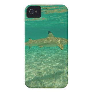 Shark in bora bora iPhone 4 hülle