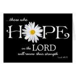 Shasta Gänseblümchen-Hoffnung in der Karte 40:31 L