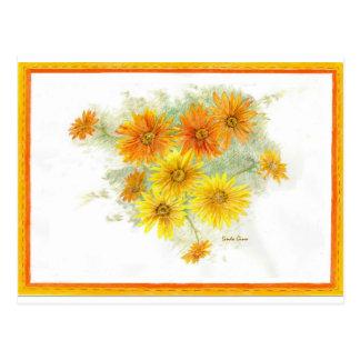 Shasta Gänseblümchen nach dem Regen Postkarte