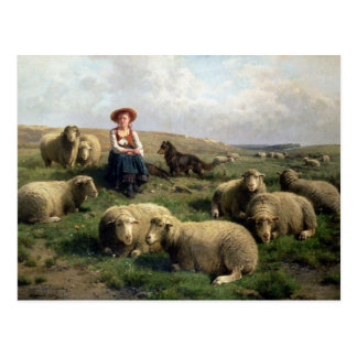 Shepherdess mit Schafen in einer Landschaft Postkarte