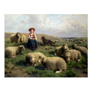 Shepherdess mit Schafen in einer Landschaft Postkarten