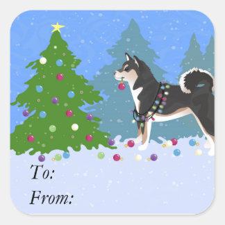 Shiba Inu Hund, der Weihnachtsbaum verziert Quadratischer Aufkleber
