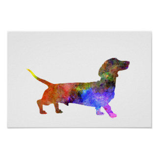 Shorts Haired Dachshund 01-2 Poster