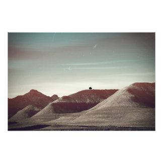 Shoshone Fotodruck