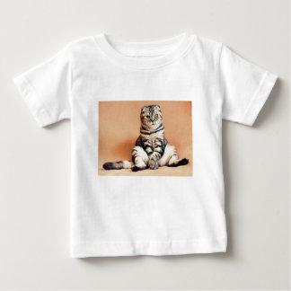 Shotlanskogo Falten-Katzen-Kätzchen Pets britische Baby T-shirt