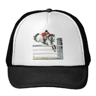 Showjumping-graues Pferd über Zäunen Kultkappe