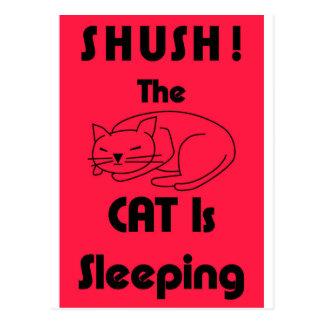 SHUSH! Die Katze schläft Postkarte