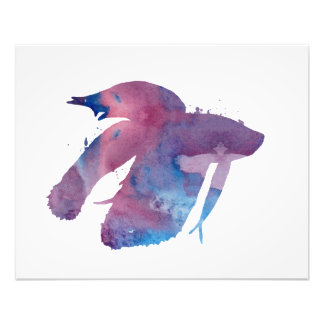 Siamesische kämpfende Fische - betta splendens Fotodruck