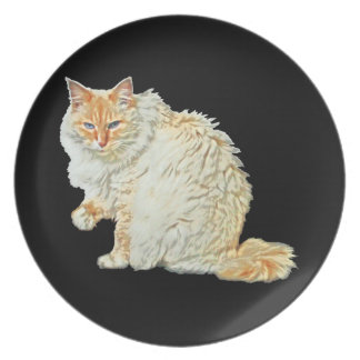Siamesische Katze 2 des Flammenpunktes Teller