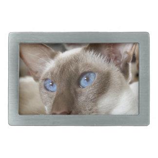 Siamesische Katzen-Haustier-Tiere Rechteckige Gürtelschnalle