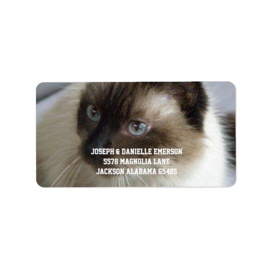 Siamesische Miezekatze-Adressen-Etiketten Adressaufkleber