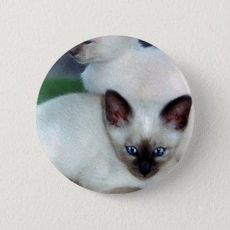 Siamesischer Kätzchen-Knopf Runder Button 5,7 Cm