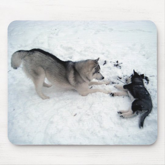 Siberian Huskies - Mousepad