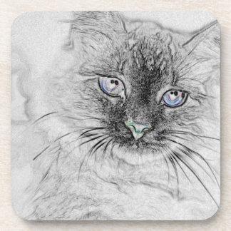 Sibirische Miezekatze-Katze, die auf der Getränkeuntersetzer