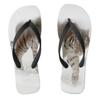 Sibirische Tiger-Tiger-doppelte Belichtungwild Flip Flops