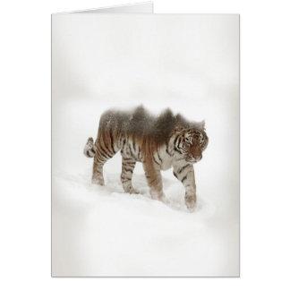 Sibirische Tiger-Tiger-doppelte Belichtungwild Karte