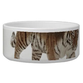 Sibirische Tiger-Tiger-doppelte Belichtungwild Napf